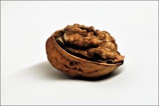 The Brain   schubalu / pixelio.de