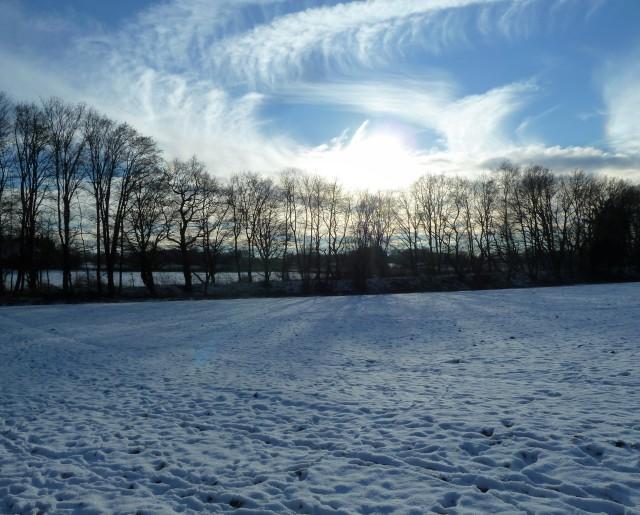 Schneefeld unter Wintersonne