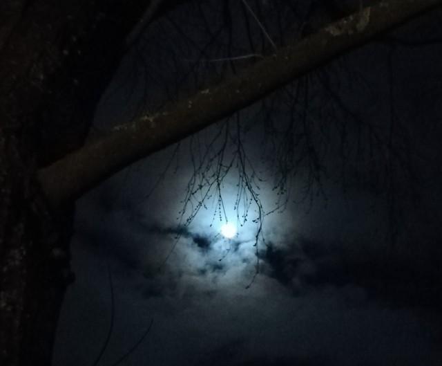 Mond im Winter 2018